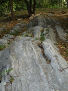 Inwood Marble outcrop in Isham Park