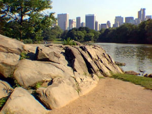 Manhattan Schist exposed at The Lake in Central Park