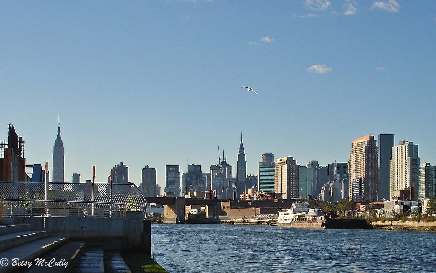 view of Manhattan from Newtown Creek Nature Walk