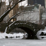 Photo of Central Park Gapstow Bridge and skyline