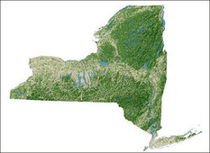 Map showing forest cover in New York State