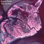 map of Duck Point Marsh, 1974