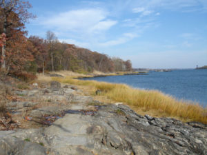 photo of schist outcrop, Pelham Bay
