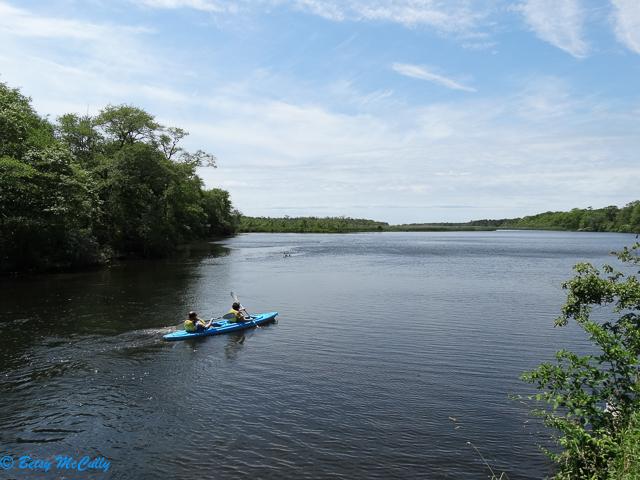photo of Carmans River