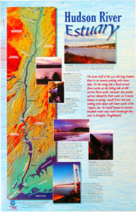 Poster of Lower Hudson Estuary