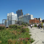 photo of High Line, Chelsea
