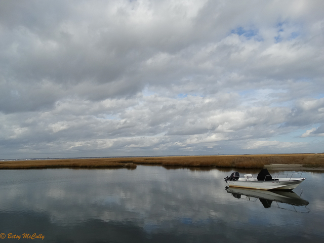 photo of salt marsh in winter
